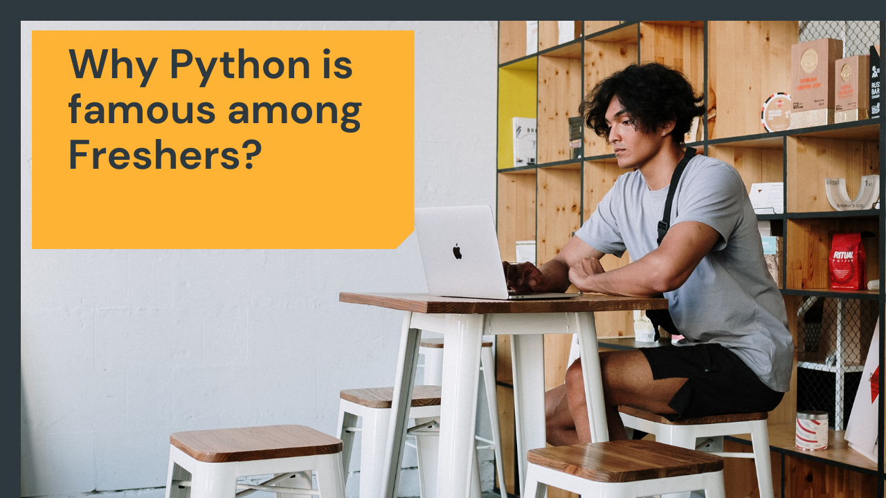 Why Python is famous among freshers?